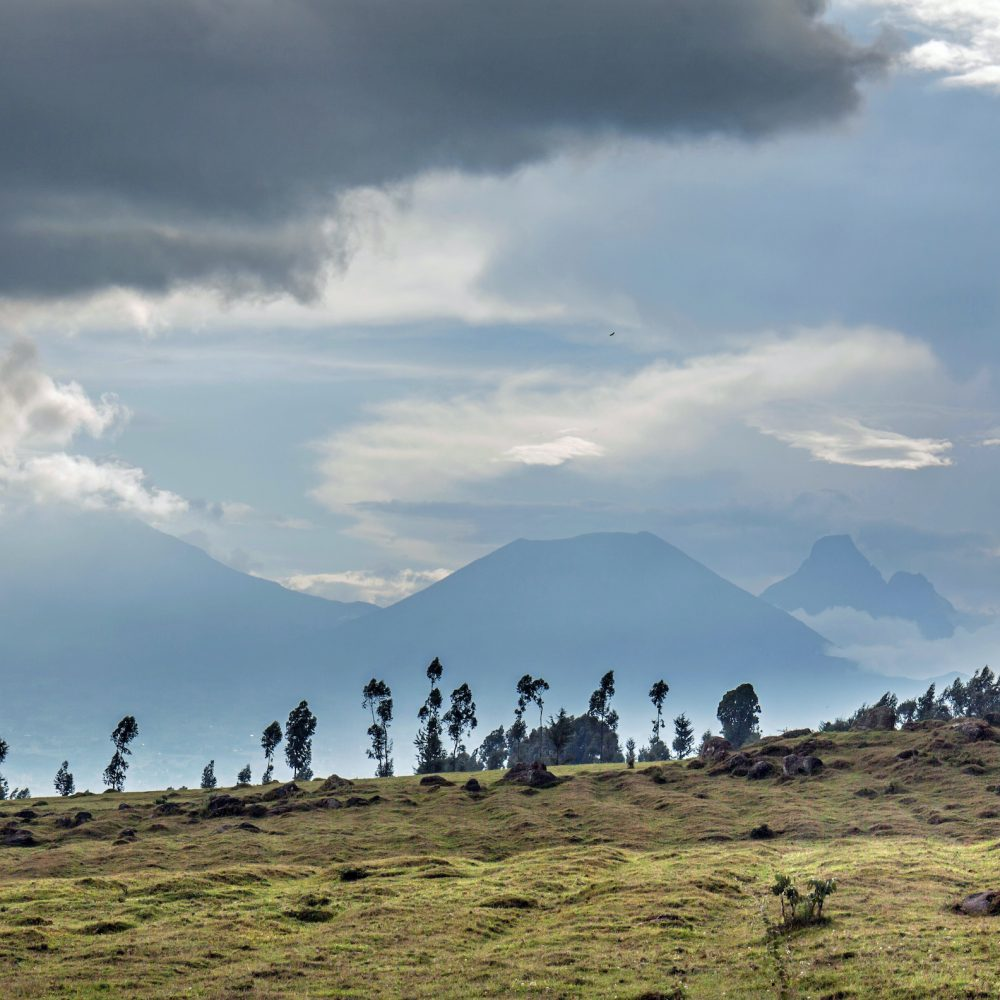Three volcanoes seen from Rwanda in the border area with the Democratic Republic of Congo: mounts Karisimbi, Bisoke & Mikeno (from left to right).